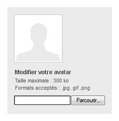 """Champ de téléchargement """"Modifier votre avatar"""" complété par les mentions """"Taille maximale : 300 ko"""" et """"Format acceptés : jpg, gif, png"""""""