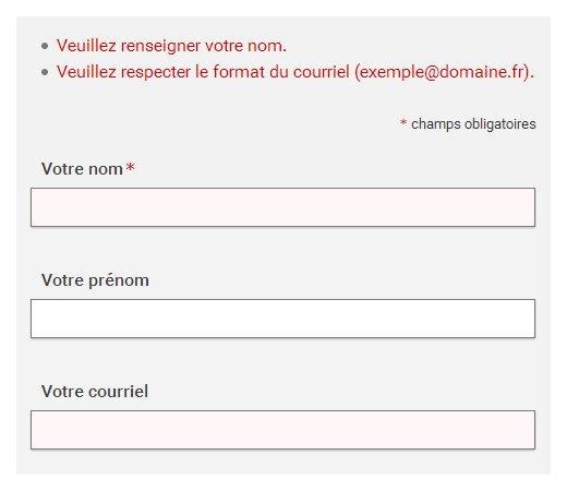 """Formulaire précédé d'une liste indiquant """"Veuillez renseigner votre nom"""" et """"Veuillez respecter le format du courriel (exemple@domaine.fr)."""